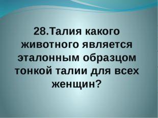 28.Талия какого животного является эталонным образцом тонкой талии для всех ж