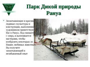 Парк Дикой природы Рануа Захватывающие и красивые ледяные скульптуры и констр