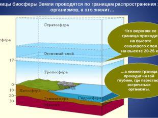 Границы биосферы Земли проводятся по границам распространения живых организмо