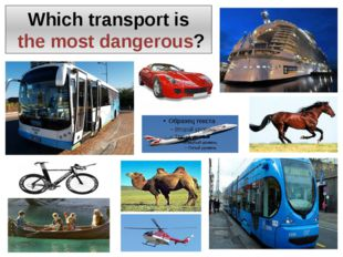 Which transport is the most dangerous?