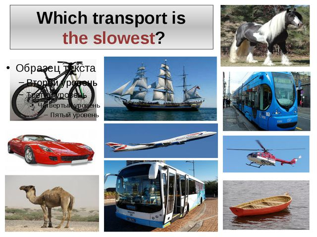 Which transport is the slowest?