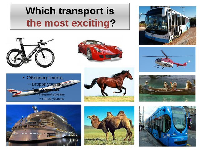 Which transport is the most exciting?