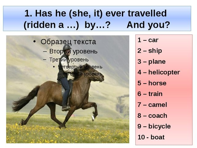 1. Has he (she, it) ever travelled (ridden a …) by…? And you? 1 – car 2 – shi...