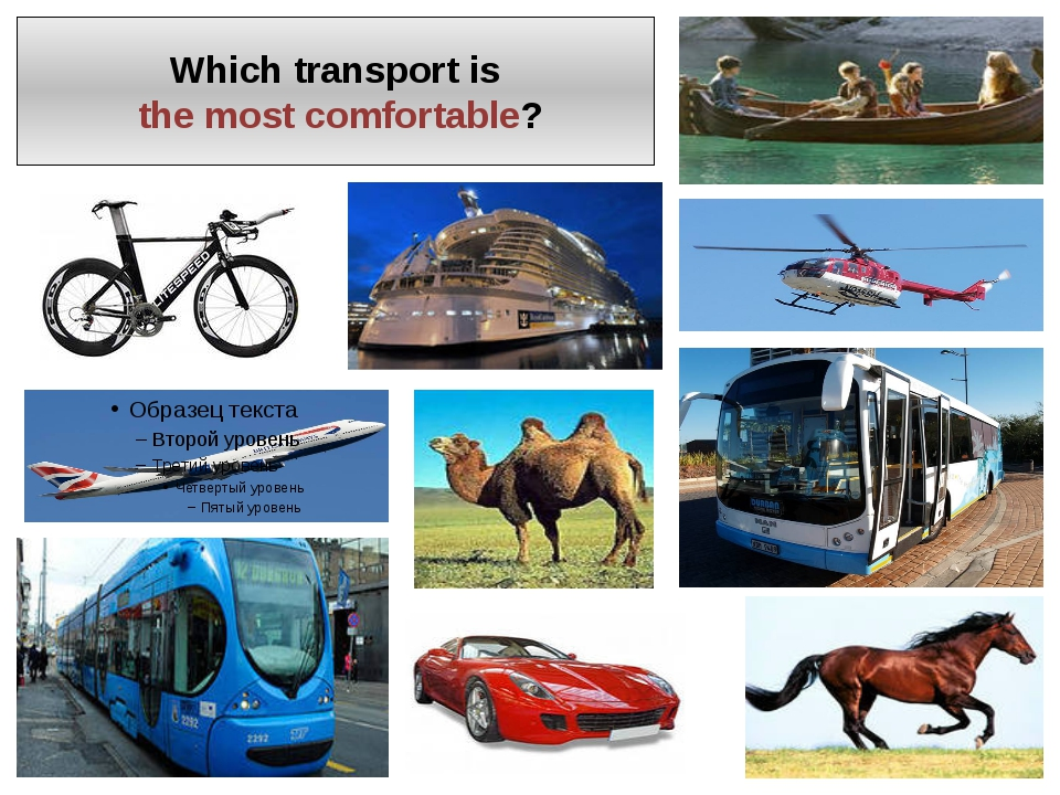 Which transport is the most comfortable?