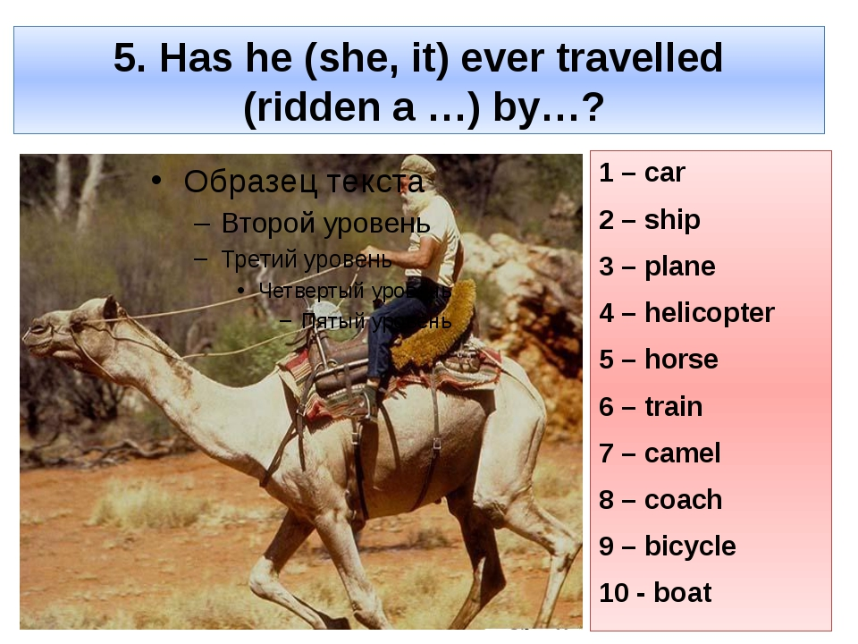 5. Has he (she, it) ever travelled (ridden a …) by…? 1 – car 2 – ship 3 – pla...