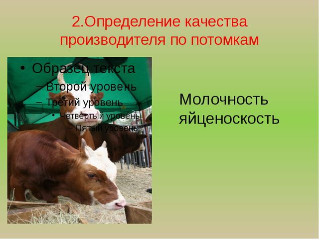 2.Определение качества производителя по потомкам Молочность яйценоскость