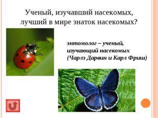 Ученый, изучавший насекомых, лучший в мире знаток насекомых? энтомолог – учен