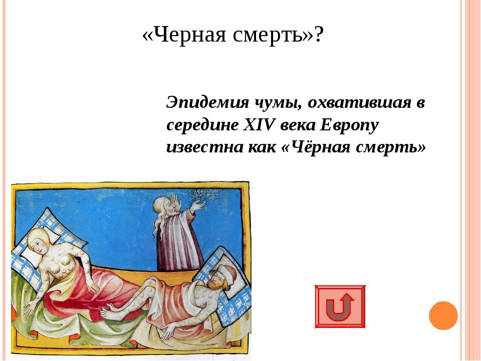 «Черная смерть»? Эпидемия чумы, охватившая в середине XIV века Европу известн...