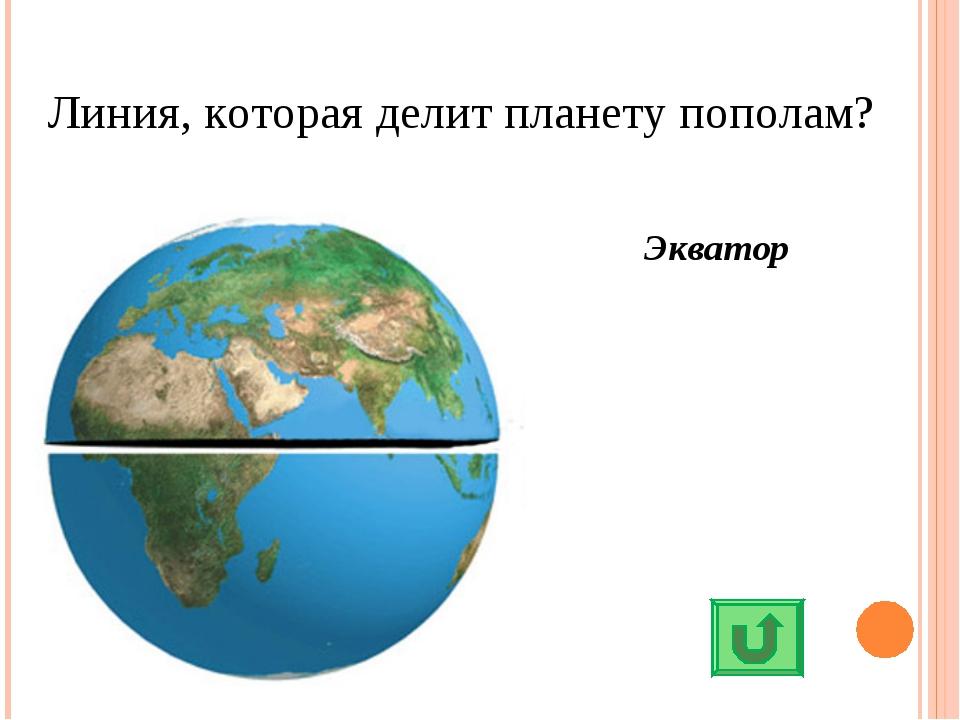Линия, которая делит планету пополам? Экватор