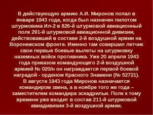 В действующую армию А.И. Миронов попал в январе 1943 года, когда был назначен