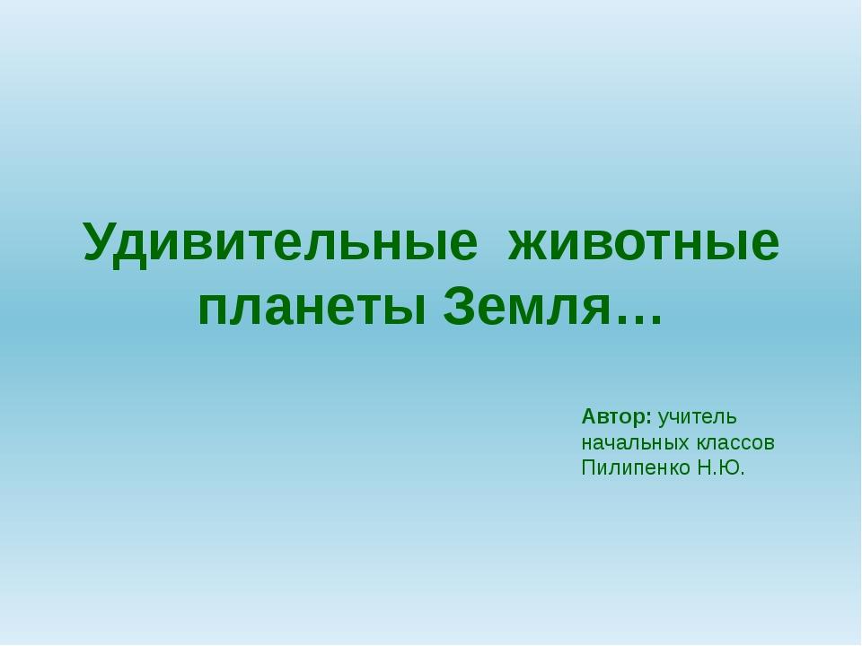 Мармозетка Гоацин Голотурия Эти удивительные животные… Гоацин - удивительная...