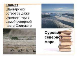 Климат Шантарских островов даже суровее, чем в самой северной части Охотского