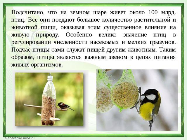 Подсчитано, что на земном шаре живет около 100 млрд. птиц. Все они поедают бо...