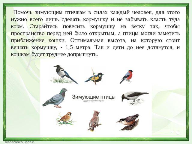 Помочь зимующим птичкам в силах каждый человек, для этого нужно всего лишь с...