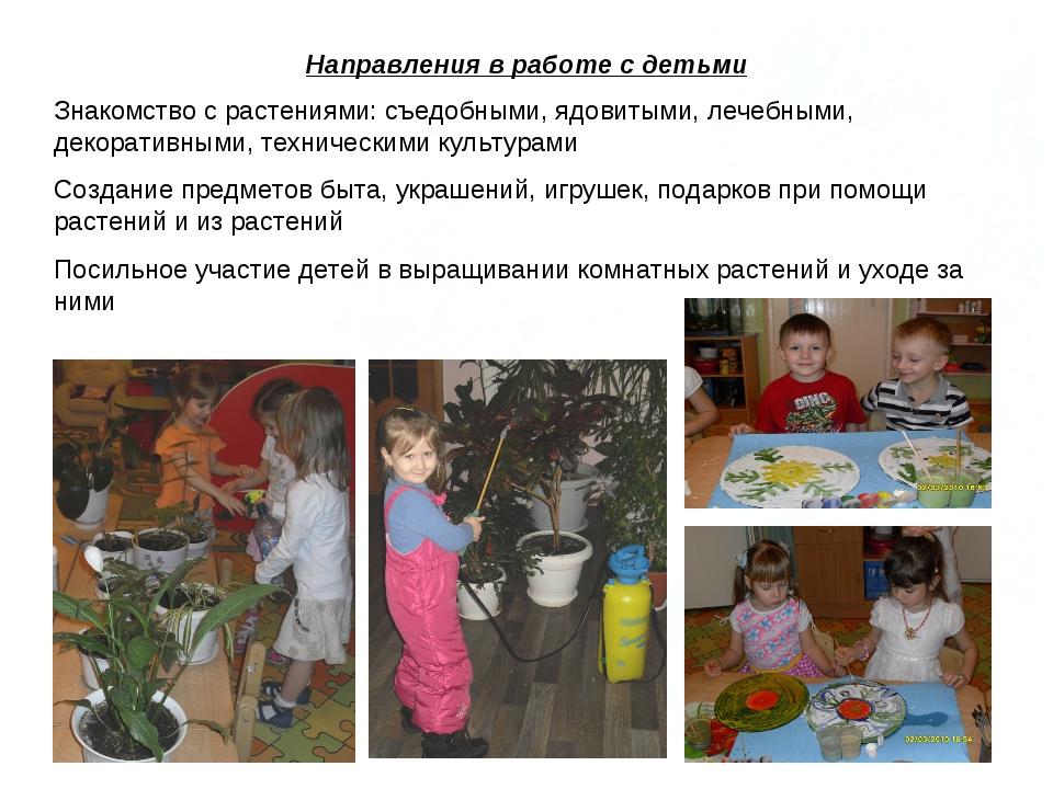 Направления в работе с детьми Знакомство с растениями: съедобными, ядовитыми,...