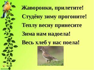 Жаворонки, прилетите! Студёну зиму прогоните! Теплу весну принесите Зима нам