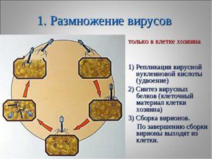 1. Размножение вирусов только в клетке хозяина 1) Репликация вирусной нуклеин