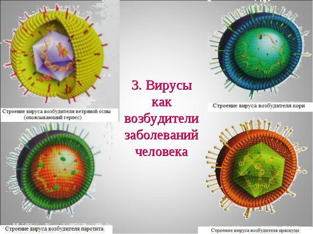 3. Вирусы как возбудители заболеваний человека