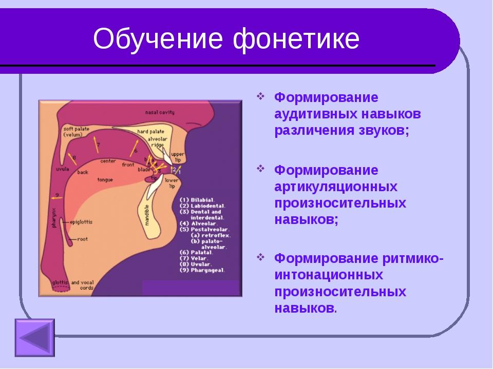 Обучение фонетике Формирование аудитивных навыков различения звуков; Формиров...