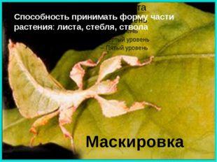 Маскировка Способность принимать форму части растения: листа, стебля, ствола