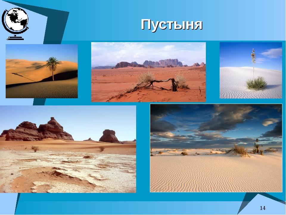* Пустыня преподаватель: Головина Е.А.