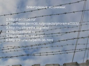 Электронные источники: http://.perm36.ru/ http://www.perm36.ru/projects/pilo