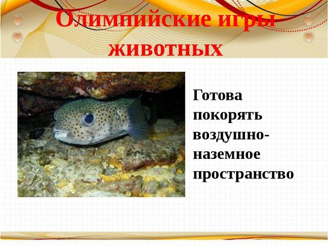 Олимпийские игры животных Готова покорять воздушно-наземное пространство Бори...