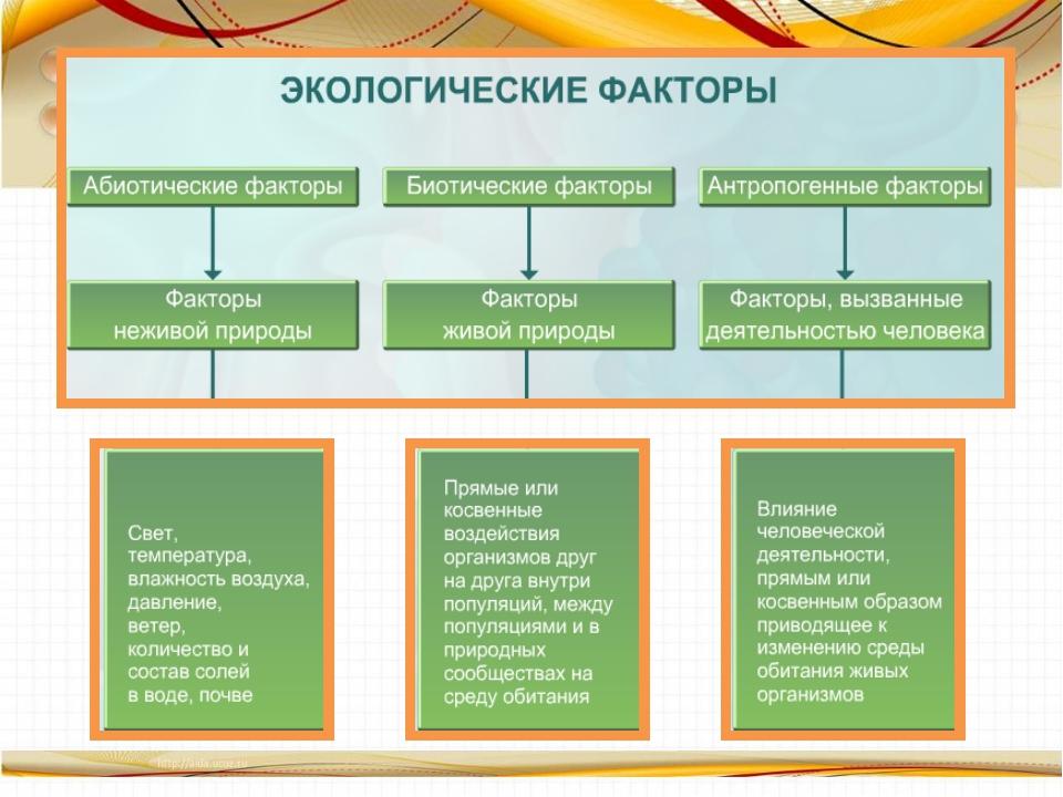 Донцов Петр. Николай I - попаданец. Книга 2