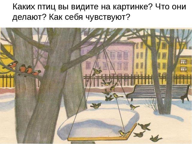 Каких птиц вы видите на картинке? Что они делают? Как себя чувствуют?