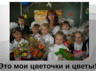 Это мои цветочки и цветы!