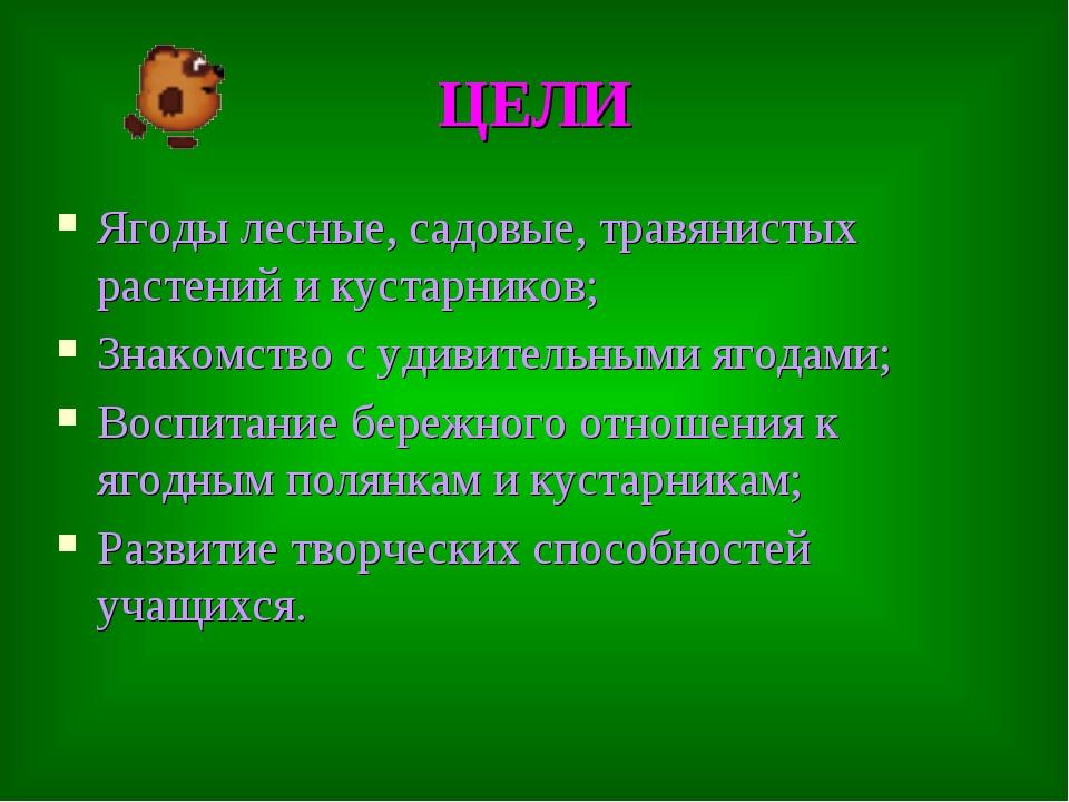 ЦЕЛИ Ягоды лесные, садовые, травянистых растений и кустарников; Знакомство с...