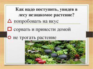 Как надо поступить, увидев в лесу незнакомое растение?  попробовать на вкус