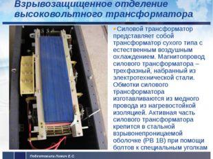 Взрывозащищенное отделение высоковольтного трансформатора Силовой трансформат