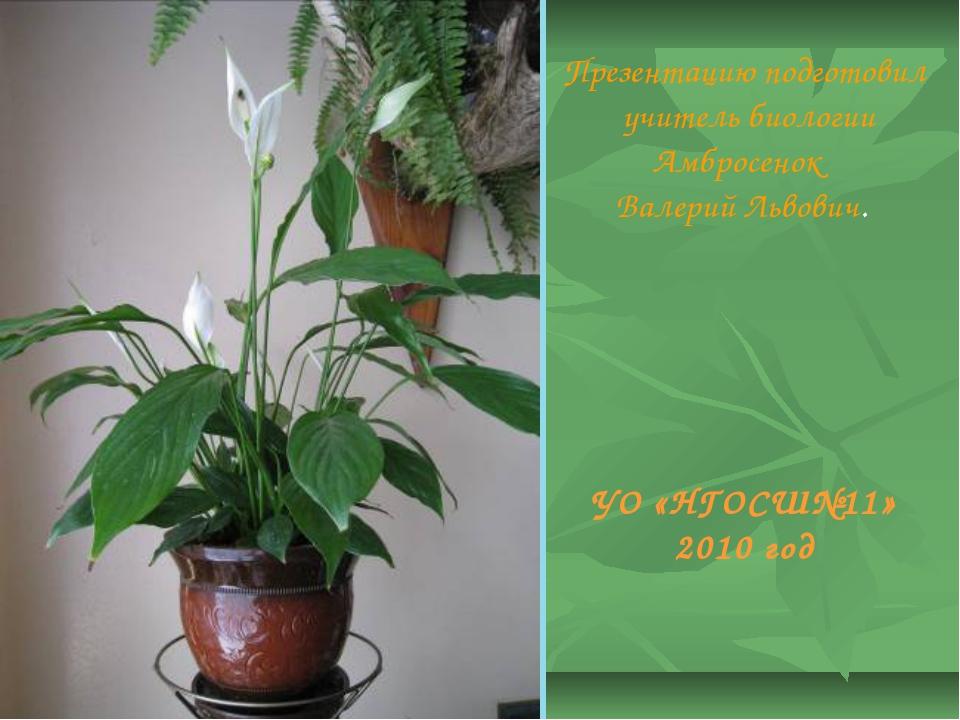 УО «НГОСШ№11» 2010 год Презентацию подготовил учитель биологии Амбросенок Вал...