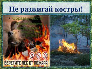 Не разжигай костры!