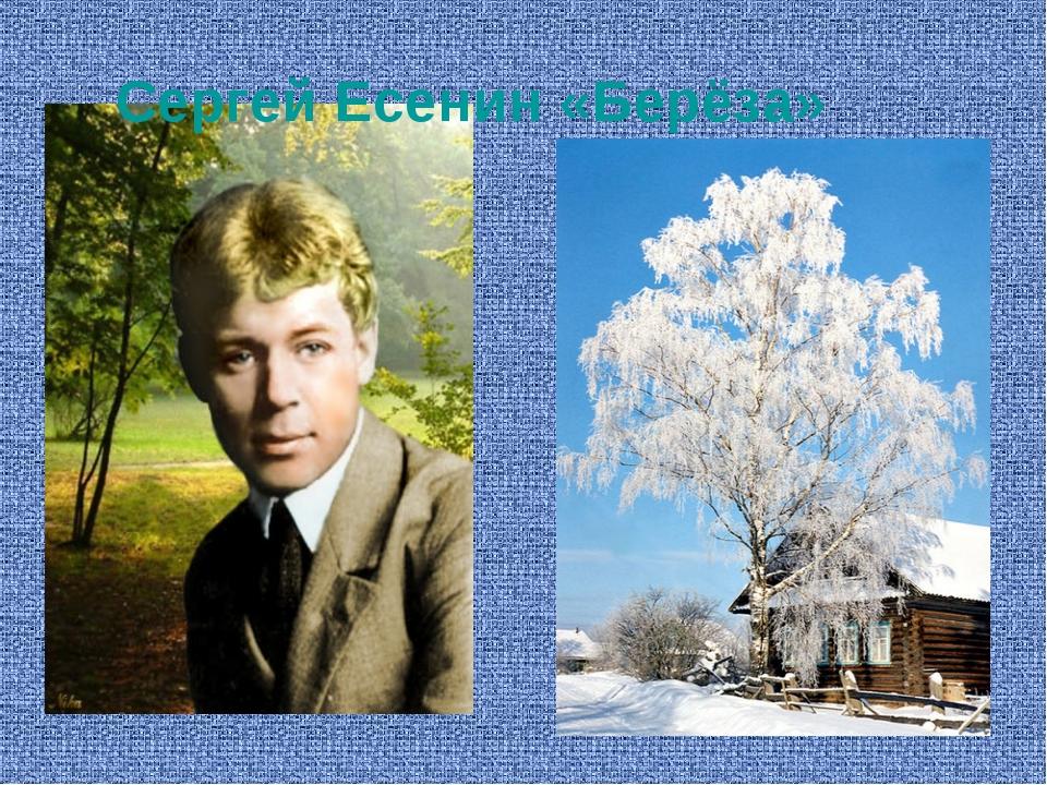 Сергей Есенин «Берёза»
