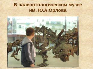 В палеонтологическом музее им. Ю.А.Орлова