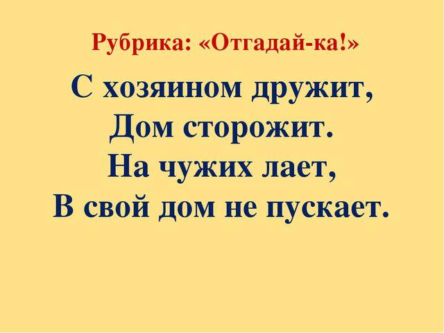 Рубрика: «Отгадай-ка!» С хозяином дружит, Дом сторожит. На чужих лает, В сво...