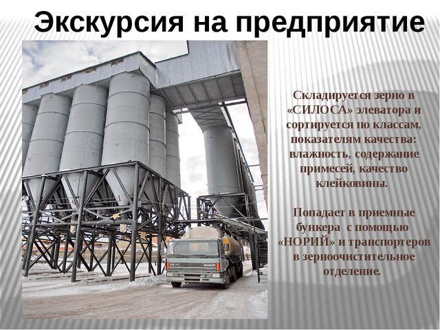 Складируется зерно в «СИЛОСА» элеватора и сортируется по классам, показателя...