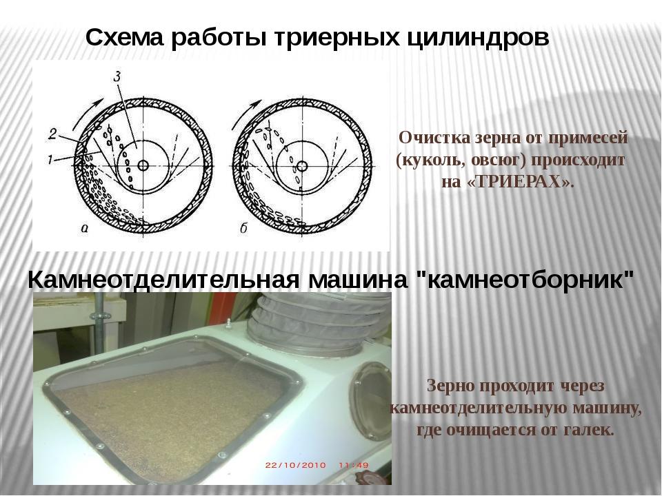 Очистка зерна от примесей (куколь, овсюг) происходит на «ТРИЕРАХ». Зерно прох...