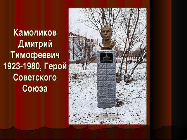 Камоликов Дмитрий Тимофеевич 1923-1980, Герой Советского Союза