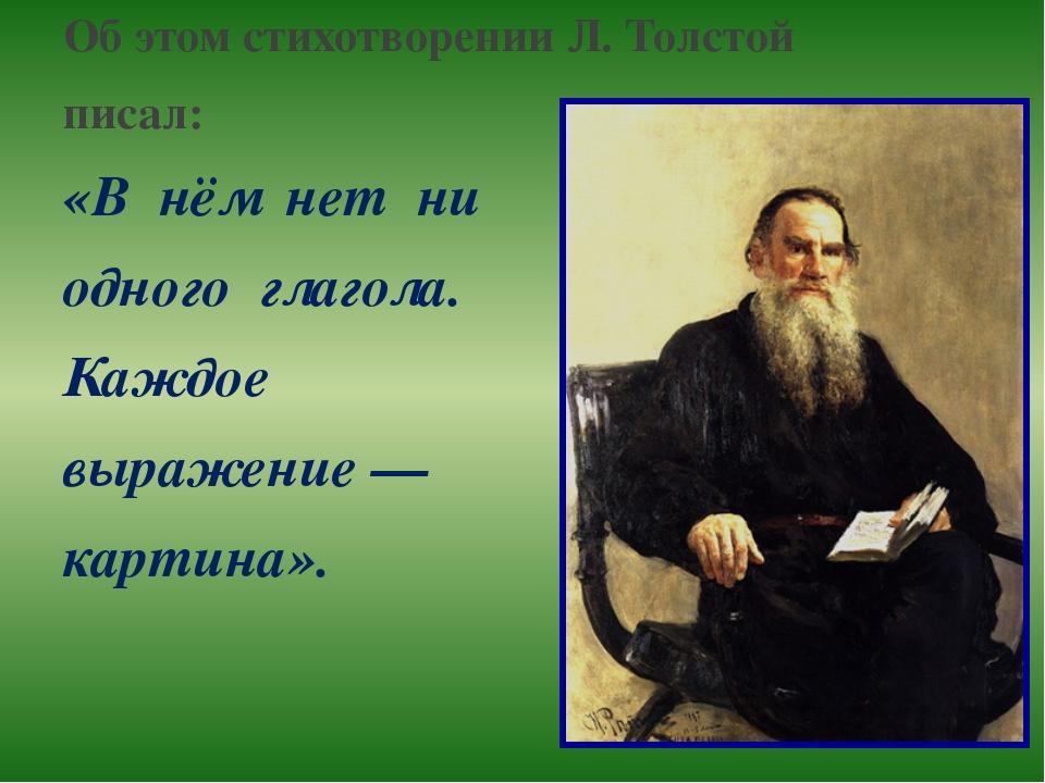 Об этом стихотворении Л. Толстой писал: «В нём нет ни одного глагола. Каждое...