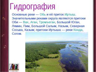 Основные реки— Обь и её приток Иртыш. Значительными реками округа являются п