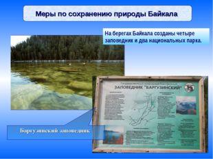 Меры по сохранению природы Байкала Баргузинский заповедник На берегах Байкала