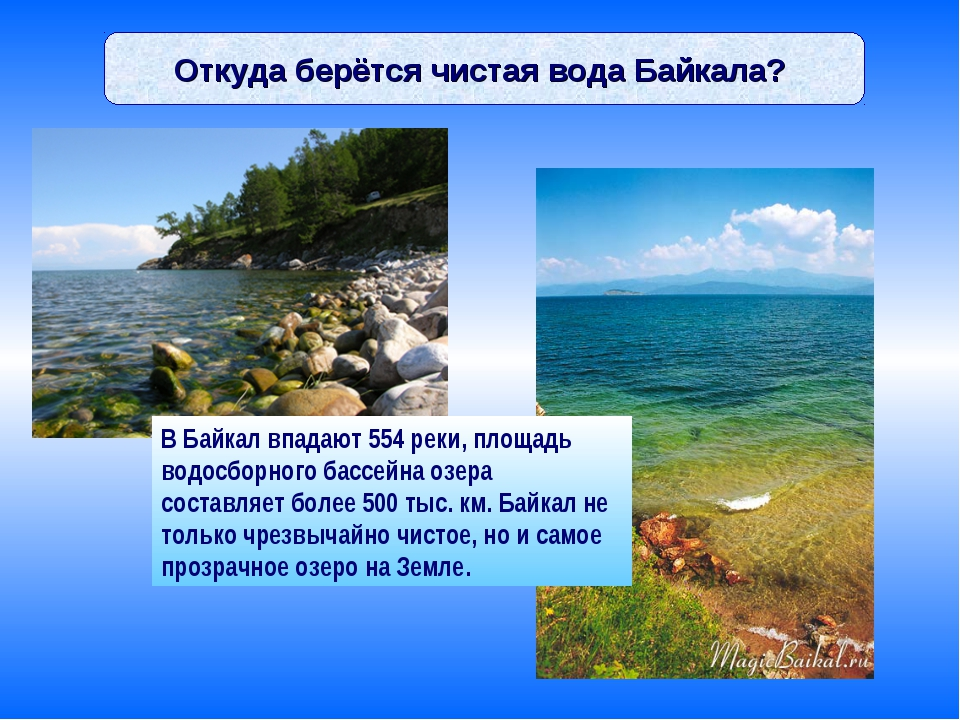 Откуда берётся чистая вода Байкала? В Байкал впадают 554 реки, площадь водосб...