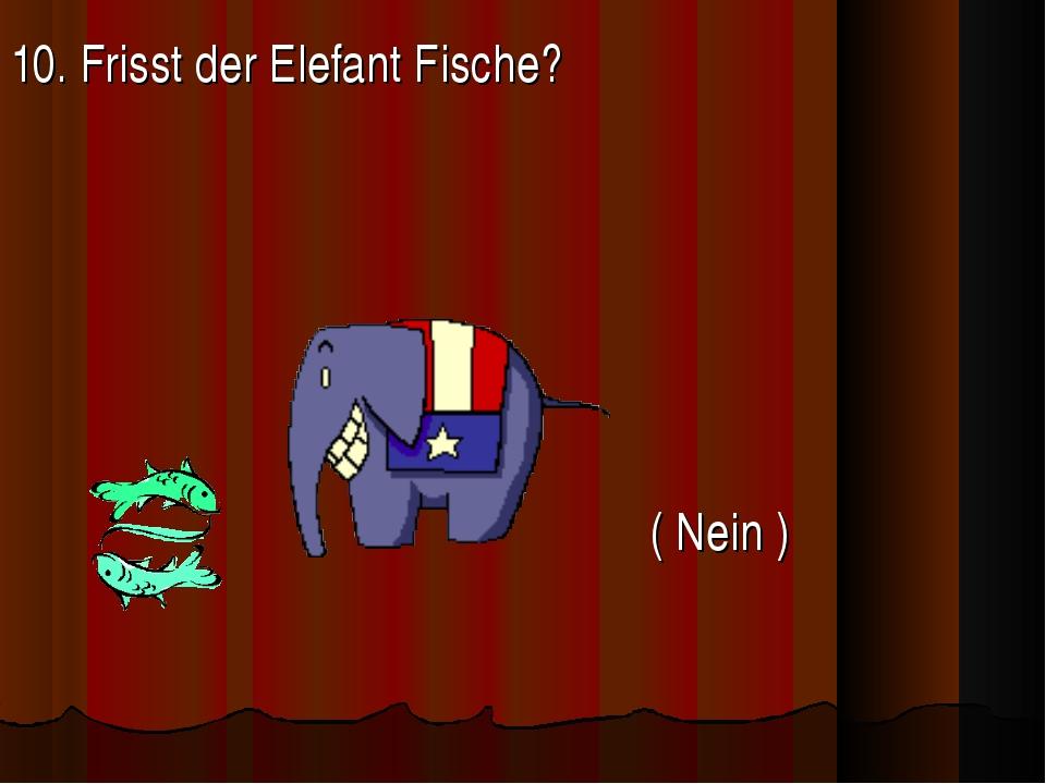 10. Frisst der Elefant Fische?   ( Nein )