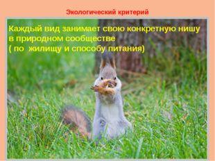 Экологический критерий Каждый вид занимает свою конкретную нишу в природном с