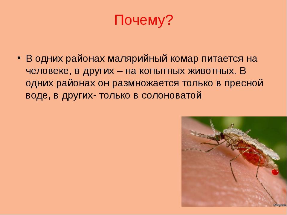 Почему? В одних районах малярийный комар питается на человеке, в других – на...