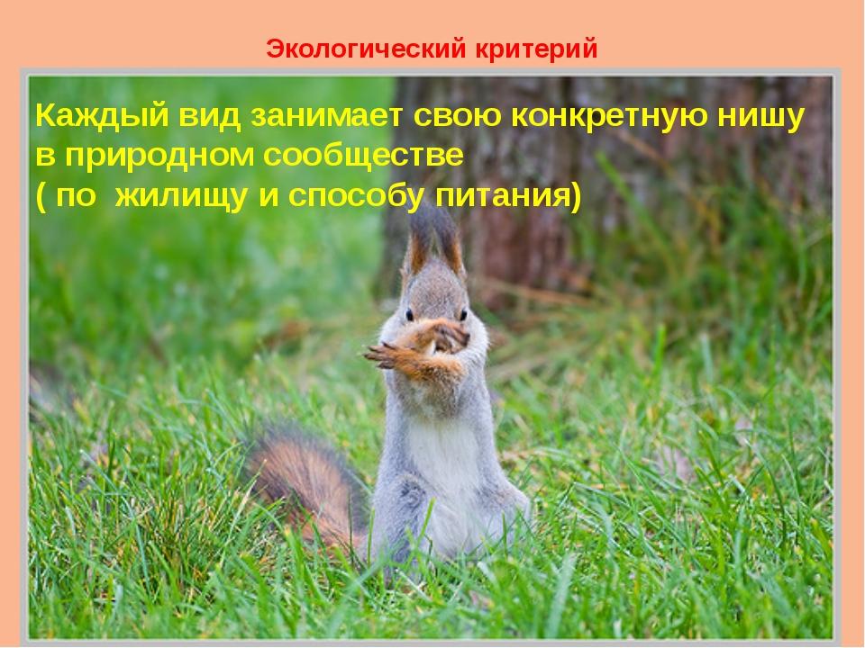 Экологический критерий Каждый вид занимает свою конкретную нишу в природном с...