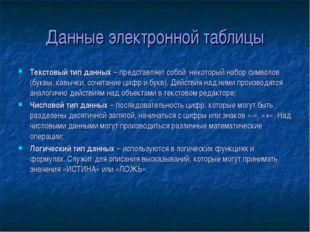Данные электронной таблицы Текстовый тип данных – представляет собой некоторы